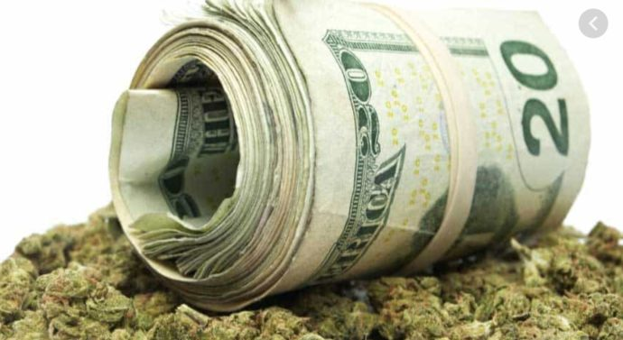 Cannabis Wealth12